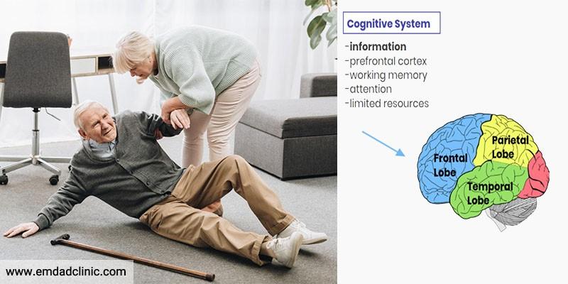 نقش کارکردهای شناختی در سقوط یا افتادن در سالمندان