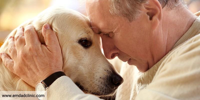 تاثیر حیوان خانگی بر افسردگی سالمندان